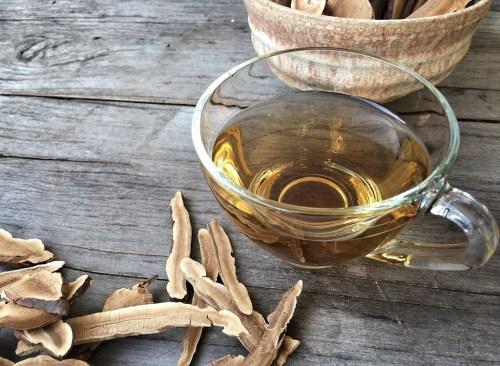reishi-tea
